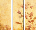 Leinwandbild grunge floral background with space for text or image