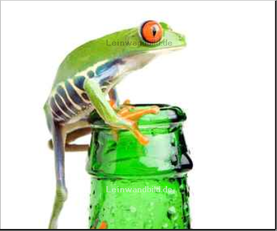 Leinwandbild - Sascha Burkard : frog on a bottle with water, a red-eyed tree frog isolated