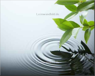 Leinwandbild - Okea : water ripple and leaf