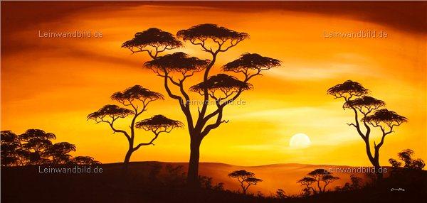 leinwandbild motiv chanel simon african sunset leinwandbild keilrahmenbild wandbild. Black Bedroom Furniture Sets. Home Design Ideas
