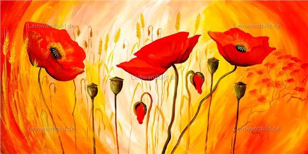 Leinwandbild motiv mia morro sunny poppies leinwandbild keilrahmenbild wandbild - Wandbilder keilrahmenbilder ...