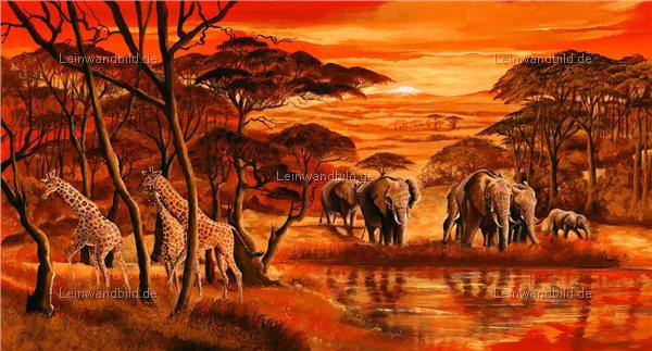 Leinwandbild motiv mia morro wildes afrika leinwandbild keilrahmenbild wandbild - Wandbilder malen motive ...